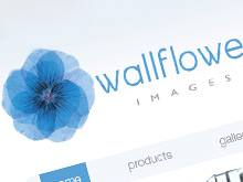 wallflowerimages-staticweb-01
