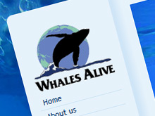 whalesalive-webdesign-01