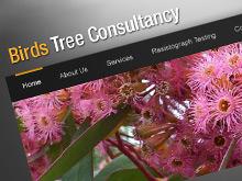 birdtree-html-design-01