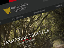 tas-truffles-ecommerce-cms-website-development
