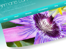 annmarie-cannone-cms-updateable-website-development