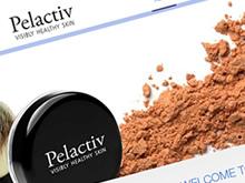 palactiv-website-design