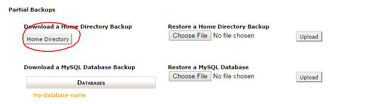 Backup a home directory in cpanel