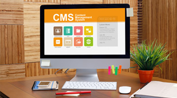 img-advantages-CMS-web-design