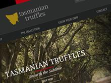 tas-truffles-ecommerce-cms-website-development