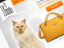 cat-inn-bag-website-design