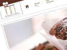 vse-ecommerce-website-development