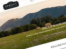 sprout-cms-website-design-sydney