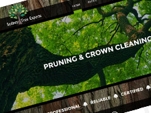 sydney-tree-experts-cms-website-design-sydney